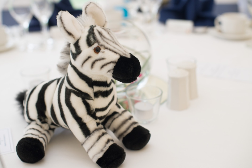 zebra, table, marquee, wedding, Marwell Zoo