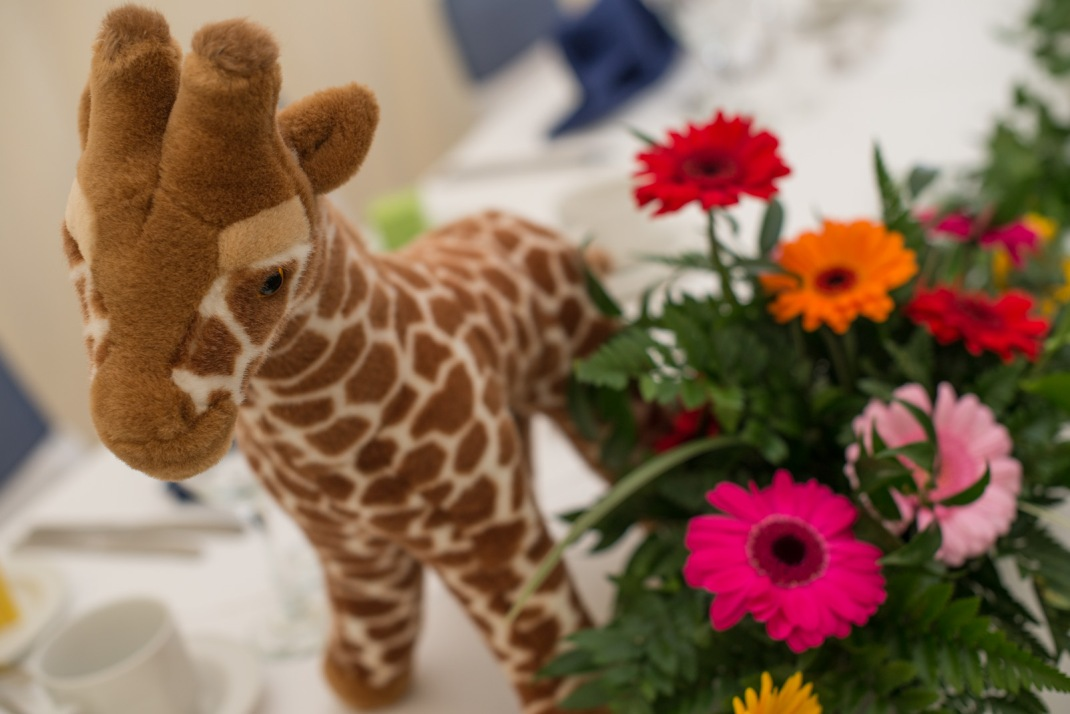 giraffe, soft toy, table setting, bright, flowers, Marwell Zoo, Marwell House, marquee