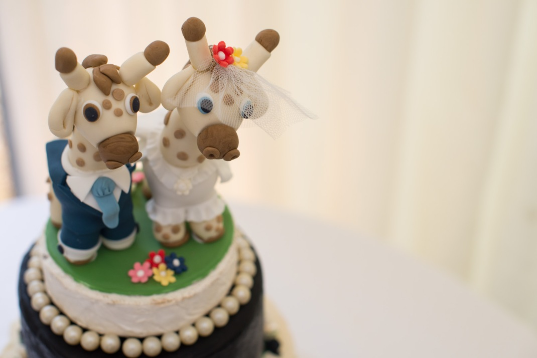 cake toppers, giraffe, fun,