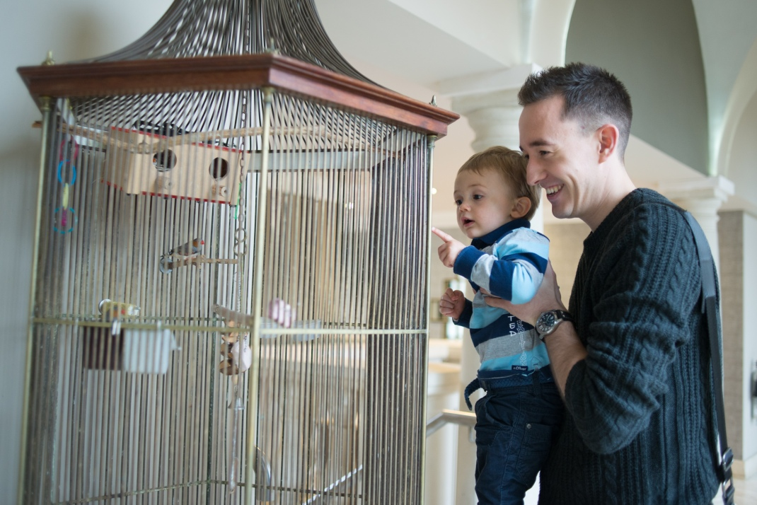 nephew, uncle, birds, birdcage